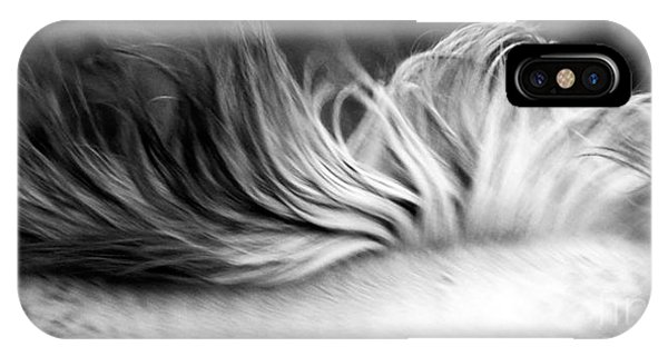 White Mare Mane Number One Close Up Panoramic Black And White IPhone Case