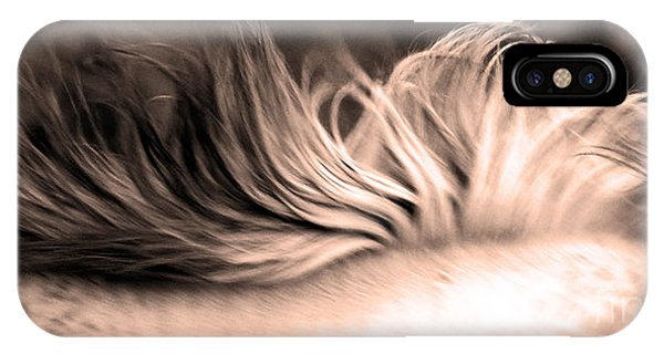 White Mare Mane Number One Close Up Panoramic Sepia IPhone Case