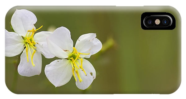 White Meadow Beauty IPhone Case