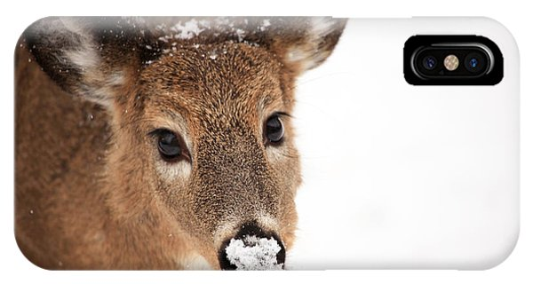 White On The Nose IPhone Case