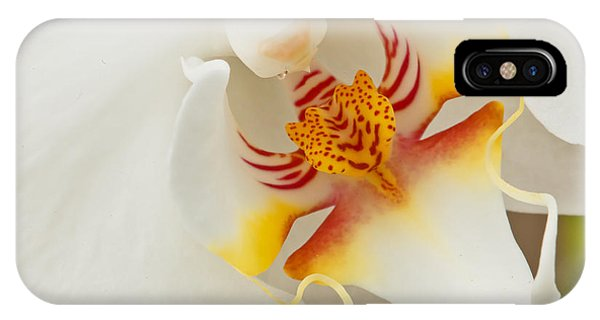 White Orchid 2 IPhone Case
