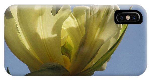 White Parrot Tulip IPhone Case