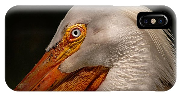White Pelican Portrait IPhone Case