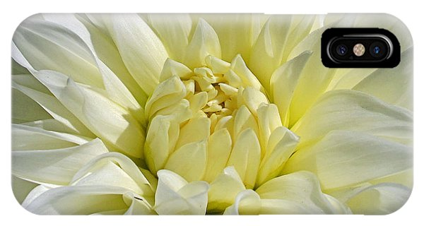 iPhone Case - White Peony by Kelly Holm