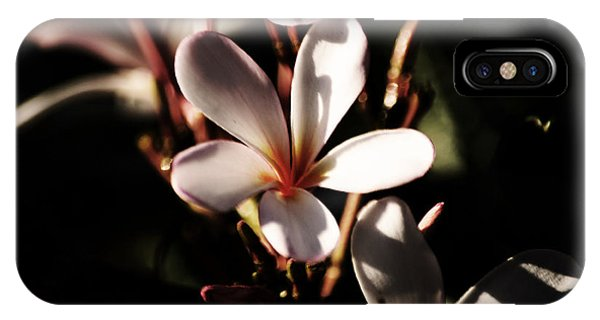 White Plumeria IPhone Case