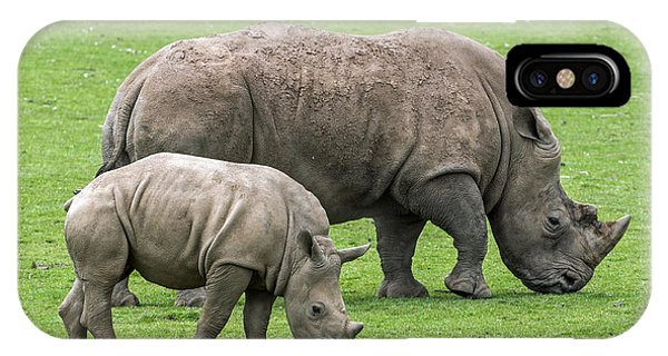 White Rhino 8 IPhone Case