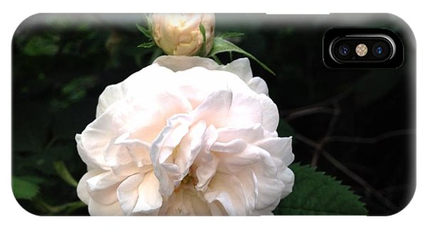 White Rose And Bud IPhone Case