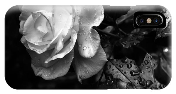 White Rose Full Bloom IPhone Case
