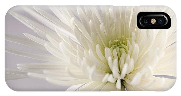 White Spider Mum On White IPhone Case