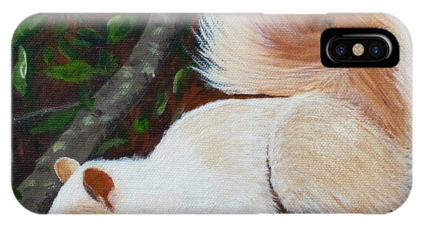 White Squirrel Of Sooke IPhone Case