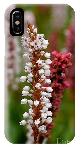 White Stalk Flower IPhone Case