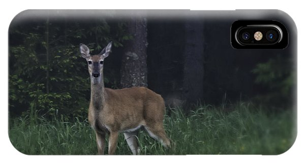 White Tailed Deer iPhone Case - White-tailed Deer by Veikko Suikkanen