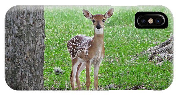White-tailed Fawn - Face Of Innocence IPhone Case
