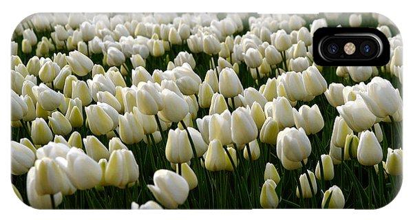 White Tulip Field  IPhone Case
