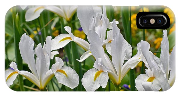 White Van Vliet Iris IPhone Case