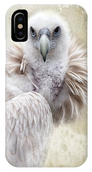 White Vulture  IPhone Case
