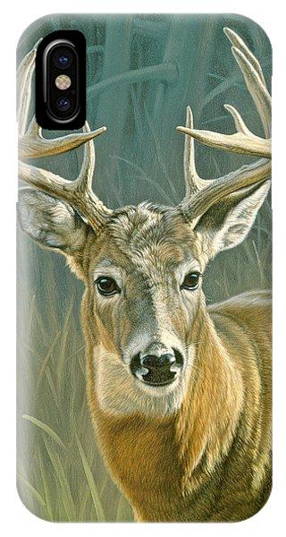 Buck iPhone Case - Whitetail Buck by Paul Krapf