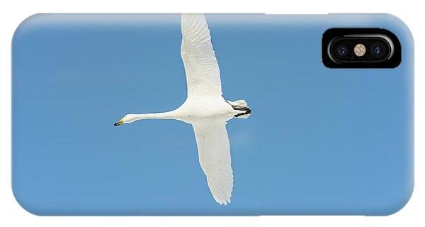 Behaviour iPhone Case - Whooper Swan In Flight by Dr P. Marazzi