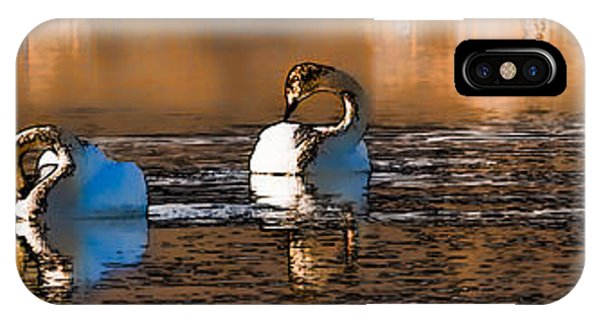 Whooper Swan  P By Leif Sohlman IPhone Case