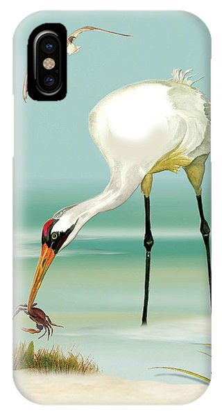Whooping Crane In Color IPhone Case