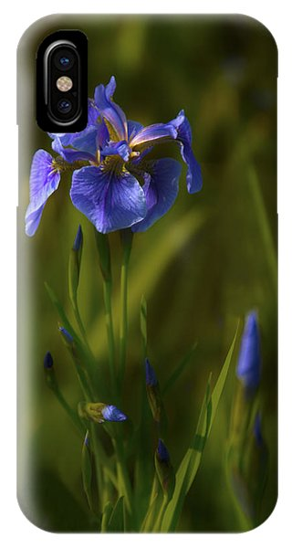 Wild Alaskan Iris IPhone Case