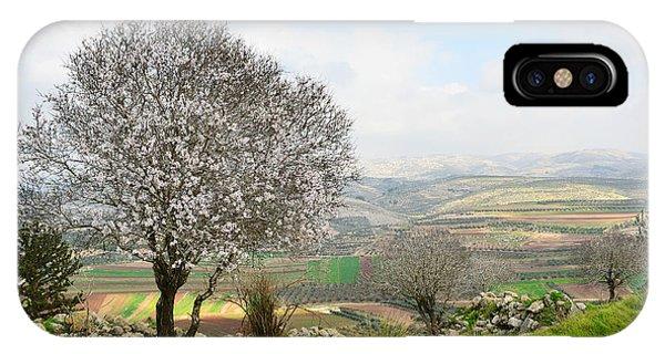 Wild Almond Tree In Beautiful Scenery IPhone Case