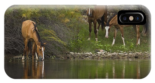 Wild Along The River IPhone Case