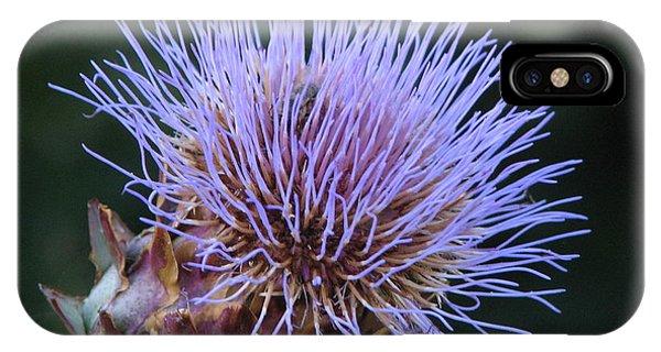 Wild Artichoke Flower IPhone Case