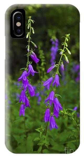 Wild Bells IPhone Case
