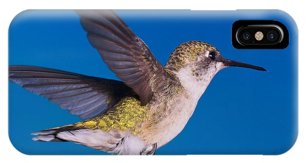 Wild Blue Yonder IPhone Case