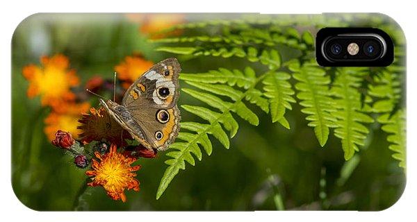 Wild Buckeye Camouflage IPhone Case