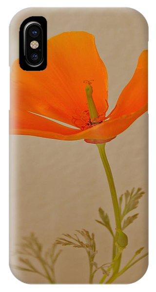 Wild California Poppy No 1 IPhone Case