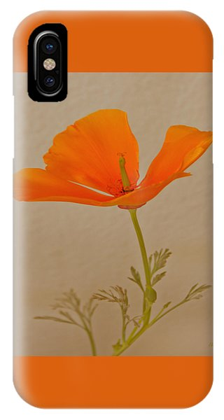 Wild California Poppy No 1 IPhone Case
