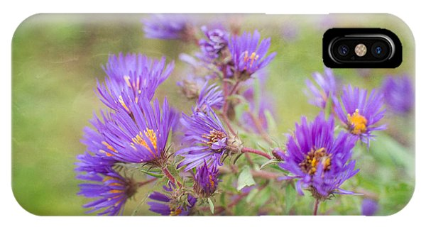 Wild Flowers In The Fall IPhone Case
