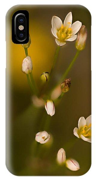 Wild Garlic IPhone Case
