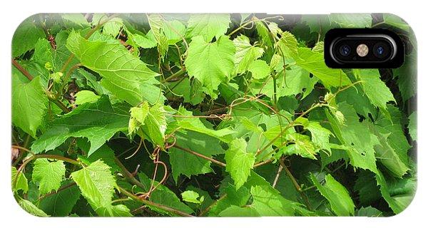 Wild Grapevine IPhone Case