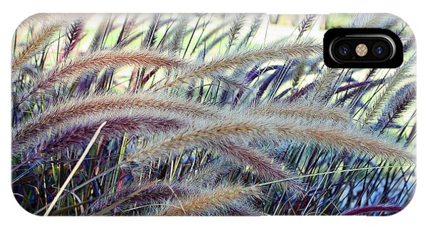 Wild Grasses In Autumn IPhone Case