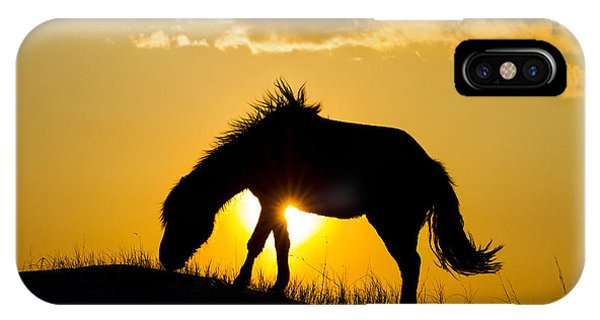 Wild Horse And Setting Sun IPhone Case