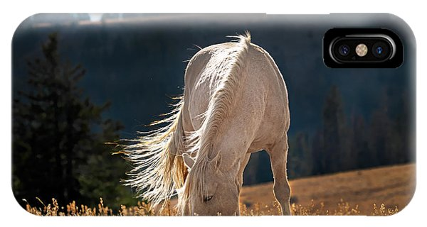 Wild Horse Cloud IPhone Case