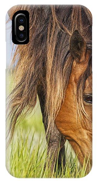 Wild Horse Grazing IPhone Case