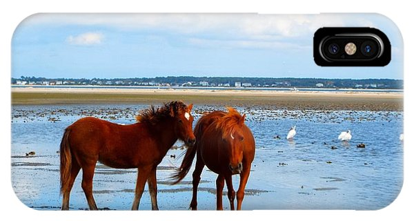 Wild Horses And Ibis 2 IPhone Case