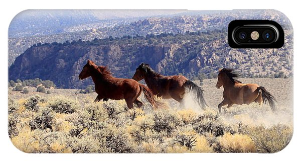 Wild Horses IIi IPhone Case