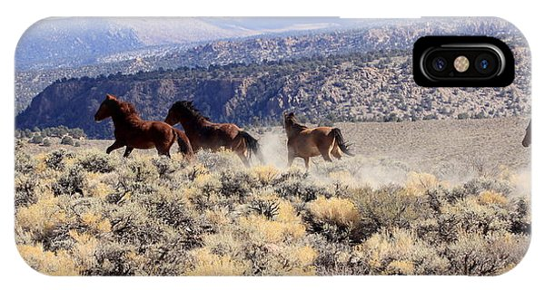 Wild Horses Iv IPhone Case