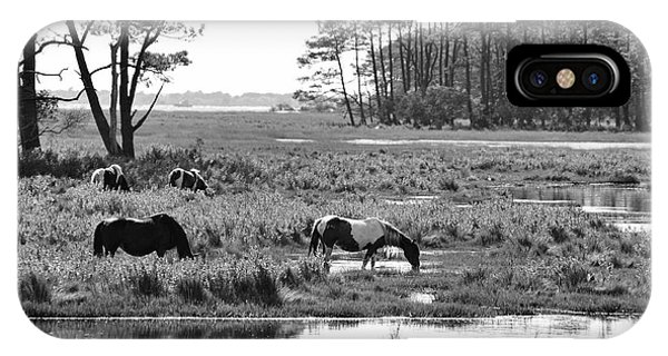 IPhone Case featuring the photograph Wild Horses Of Assateague Feeding by Dan Friend