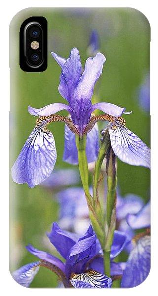 Wild Irises IPhone Case