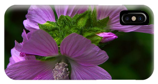 Wild Mallow - Malva IPhone Case