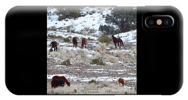Wild Mustangs In A Nevada Winter IPhone Case