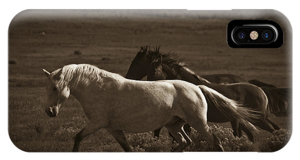 Wild Mustangs Of New Mexico 10 IPhone Case