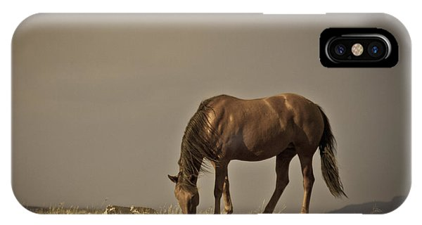 Wild Mustangs Of New Mexico 20 IPhone Case