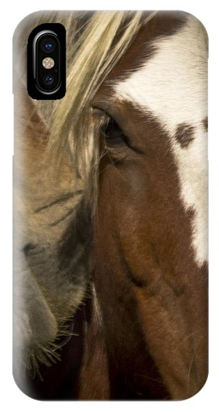 Wild Mustangs Of New Mexico 32 IPhone Case